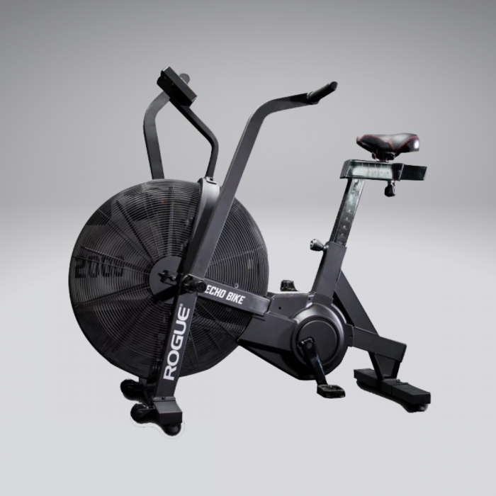Exercise equipment hire rogue echo bike indoor sports services