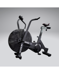 Training Exercise Machine Rogue Echo Bike